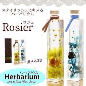 「Rosier ロジェ」 新作 ハーバリウム ギフト 花 プリザーブドフラワー 植物標本 プレゼント|bon-sense
