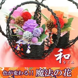 和風 プリザーブドフラワー 色が変わる 光る 魔法のバラ  (なごみ和)|bon-sense
