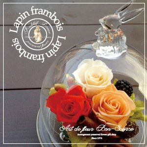 選べる4色♪幸せを贈る『幸運のうさぎ〜ラパン・フランボワーズ』プリザーブドフラワー ガラスドーム|bon-sense