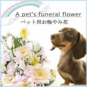 ペット専用選べるお供えの花 アレンジメント|bon-sense