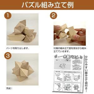 大人のための木製パズル 5点セット 145-1...の詳細画像1