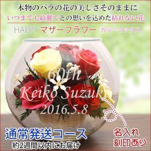 還暦祝い 女性 プレゼント 花 ハッピーマザーフラワー 大 カラーミックス 通常発送|bondsconnect