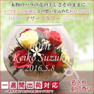 還暦祝い 女性 プレゼント 花 ハッピーマザーフラワー 大 カラーミックス 1週間発送|bondsconnect