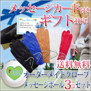 退職祝い 男性 オーダーメイドゴルフグローブ 全天候対応 プラチナ お仕立て券とメッセージゴルフボール3個セット 名入れ刺繍付き bondsconnect