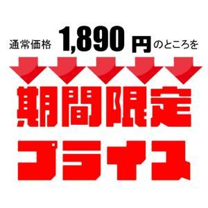 送料無料【100本入】リードディフューザー用 ラタンスティック リードスティック アロマ スティック リフィル100本入|bonheur-kobe|03
