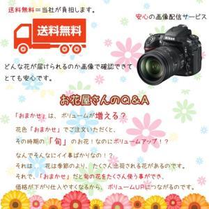 季節の花タップリのおまかせフラワーアレンジメント♪|bonita-bonita|04
