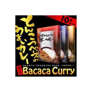 博多とんこつバカカカレー10食セット|bonita