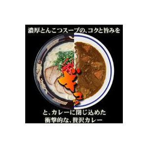 博多とんこつバカカカレー10食セット|bonita|03