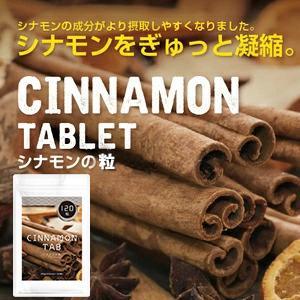 シナモンの錠剤 120粒 メール便送料無料|bonita