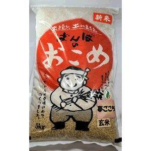 ばんばさんの夢ごこち 玄米5kg bonraspail