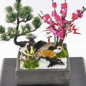 盆栽 モダン松竹梅の寄せ植え 7号サイズ 迎春の盆栽 新春 植物 豪華 縁起物 寄せ植え