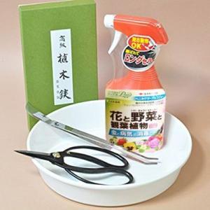 はじめての盆栽道具 シンプル4点セット bonsaimyo