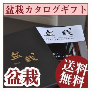 盆栽カタログギフト ミニ盆栽 送料無料 いろんな盆栽を選べる初心者向け  16商品から選べるカタログギフト 盆栽カタログギフト bonsaimyo