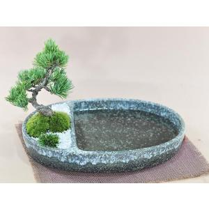ビオトープを盆栽で楽しむ。松と池の日本庭園 和の庭 池泉庭園(ちせんていえん) 左は植え込みスペース...
