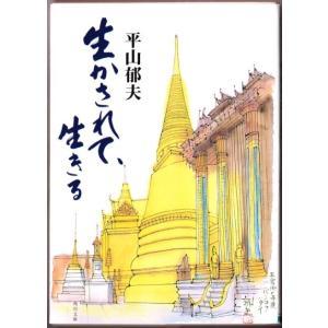 生かされて、生きる (平山郁夫/角川文庫)|bontoban