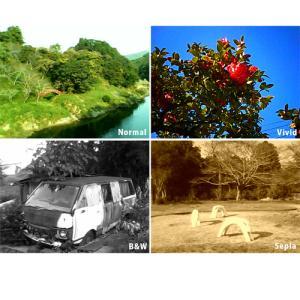 トイカメラ BONZART Lit+ 背面液晶付き ミニカメラ|bonz|05