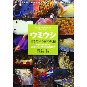 (単品)ウミウシ―生きている海の妖精_(ネイチャーウォッチングガイドブック)