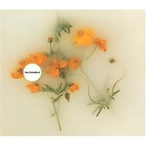 (CD)風に吹かれて(ポニーキャニオン) book-station