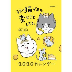 〔予約〕うちの猫がまた変なことしてる。2020カレンダー / 卵山玉子|bookfan
