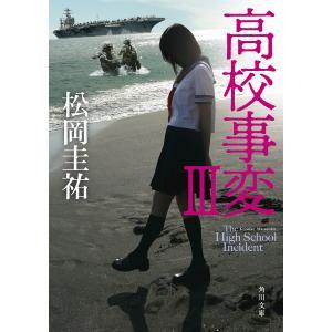 高校事変 3 / 松岡圭祐|bookfan