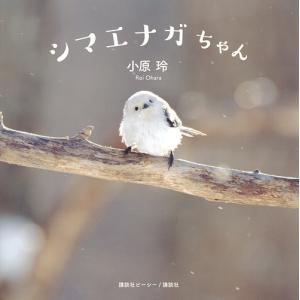 シマエナガちゃん / 小原玲