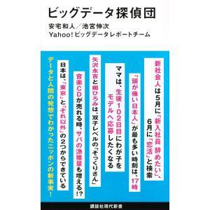 ビッグデータ探偵団 / 安宅和人 / 池宮伸次 / Yahoo!ビッグデータレポートチーム