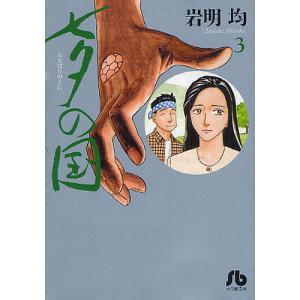 著:岩明均 出版社:小学館 発行年月:2012年02月 シリーズ名等:小学館文庫 いK−3 巻数:3...