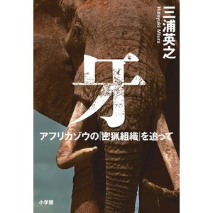 牙 アフリカゾウの「密猟組織」を追って / 三浦英之