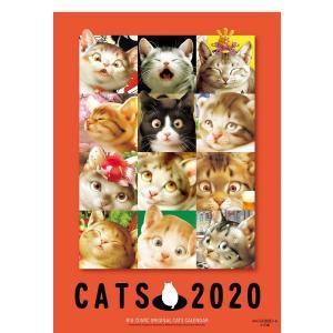 〔予約〕2020年版 村松誠 猫カレンダー bookfan