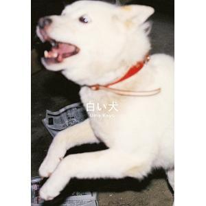 白い犬 / 梅佳代
