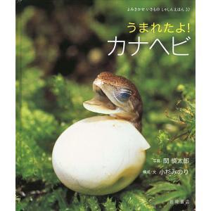 うまれたよ!カナヘビ / 関慎太郎 / 小杉みのり