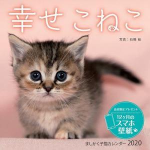 カレンダー '20 幸せこねこ / 石橋