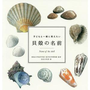 子どもと一緒に覚えたい貝殻の名前 / 東海大学海洋学部 / 海洋科学博物館 / 加古川利彦