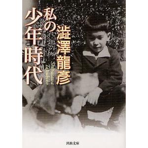 著:澁澤龍彦 出版社:河出書房新社 発行年月:2012年05月 シリーズ名等:河出文庫 し1−62