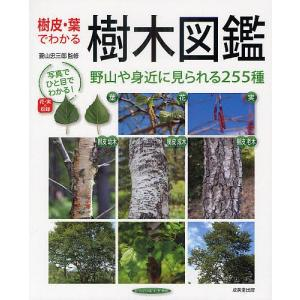 樹皮・葉でわかる樹木図鑑 野山や身近に見られる255種 / 菱山忠三郎