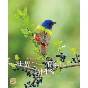大空を舞い、木々に水辺に佇む世界で一番美しい鳥図鑑 / すずき莉萌