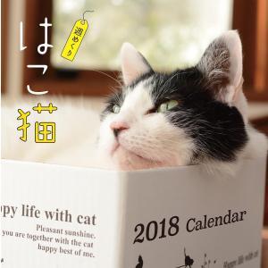カレンダー '18 はこ猫 週めくり/栗林愛