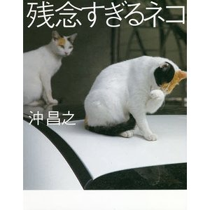 残念すぎるネコ / 沖昌之