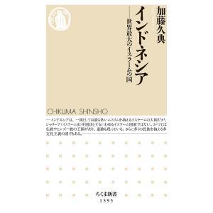 〔予約〕インドネシア / 加藤久典|bookfan