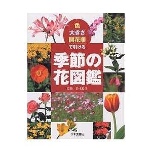 出版社:日本文芸社 発行年月:2004年07月