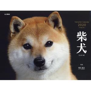 カレンダー '20 柴犬 / 福田豊文|bookfan