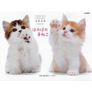 カレンダー '20 ほのぼの子ねこ / 福田豊文