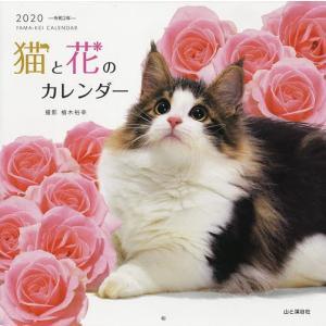 '20 猫と花のカレンダー / 植木裕幸|bookfan