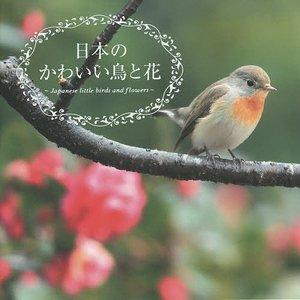 日本のかわいい鳥と花 / 真木広造