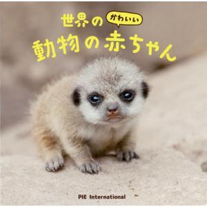 世界のかわいい動物の赤ちゃん / パイインターナショナル / 大渕希郷
