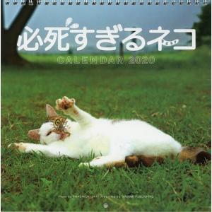 カレンダー '20 必死すぎるネコ / 沖昌之
