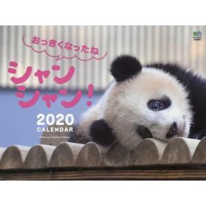 〔予約〕おっきくなったね シャンシャン !カレンダー 壁掛け(2020) / ぱんだうじ・高氏貴博|bookfan
