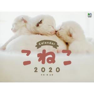 カレンダー '20 こねこ / 関由香
