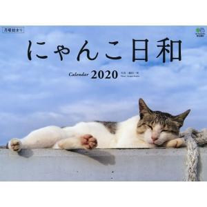 撮影:藤田一咲 出版社:エイ出版社 発行年月日:2019年09月24日