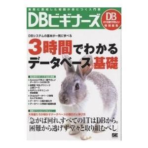 DBビギナーズ 実務に直結した知識が身につく入門書|bookfan